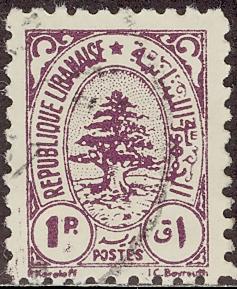 レバノンスギの画像 p1_2